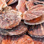 Россельхознадзор отменил запрет на ввоз живых моллюсков из Китая