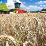 Россия направила первую партию пшеницы в Саудовскую Аравию