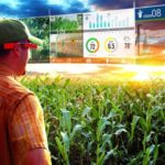 Ростех и Минсельхоз России займутся цифровизацией сельского хозяйства