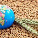 Россия диктует новые правила игры на мировом рынке зерна и готовится к сверхприбылям