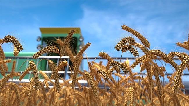 Российскому сельскому хозяйству предписано совершить новый рывок