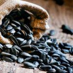 Цена семян подсолнечника в России выросла до годового рекорда