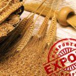 Экспорт продукции АПК из России в 2020 году может превысить $25 млрд