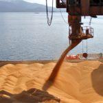 Исчерпана квота: Ростовская область не будет экспортировать зерно до 30 июня
