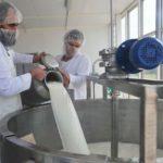 В 2019 году Тамбовские предприятия увеличили производство молока на 37%