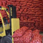 Правительство РФ начнет субсидировать перевозку овощей и удобрений