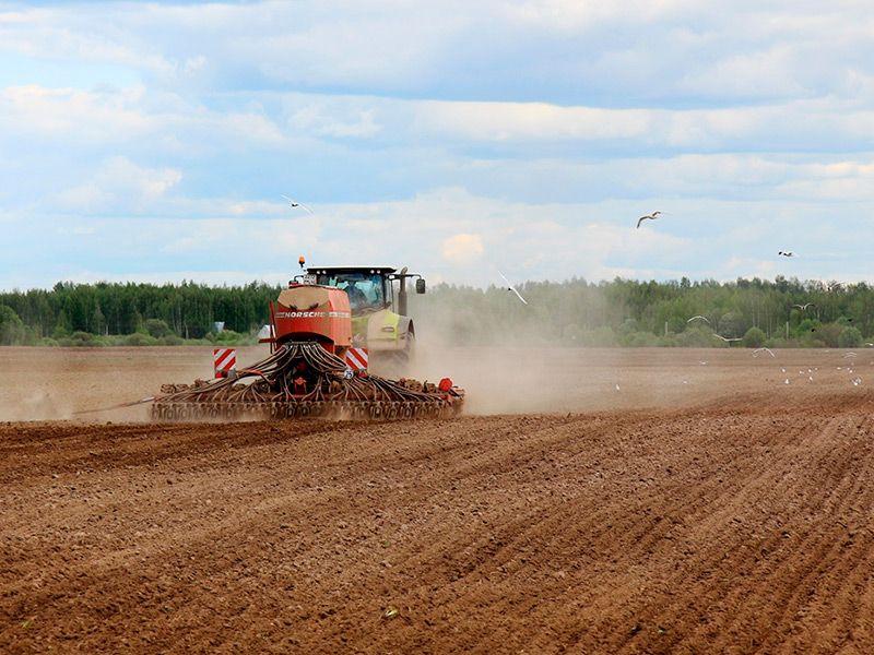 В Рязанской области сев проведён на 96% от запланированного
