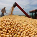Эксперты отметили «невероятные» цифры экспорта пшеницы и сои из РФ в Белоруссию в марте