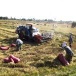Фермер закодировал односельчан, чтобы не провалить посевную