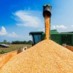Минсельхоз будет сообщать о высвобождении квоты на экспорт зерна при отказе экспортеров