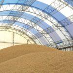 Генпрокуратура пресекла попытки ряда компаний увеличить цены на зерно