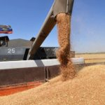 Дилеры сельхозтехники просят отменить экспортную квоту на зерно