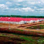 Имущество задолжавшего ВЭБу 10 млрд руб. Алтаймясопрома выставлено на торги по сниженной цене