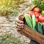 ЕР предложила упростить торговые процедуры для фермеров и садоводов