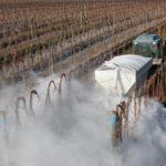 302,2 млн рублей выделено из госбюджета на известкование кислых почв в РФ