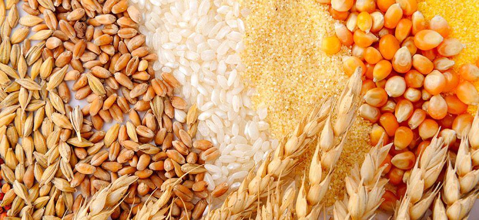 Аналитики ожидают экспорта зерна из РФ в следующем сельхозгоду в размере около 45 млн т