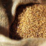 В Ростовской области к июню запасы зерна уменьшились вдвое