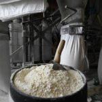 Путин поручил доложить о разработке механизма снижения волатильности цен на зерно