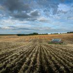 В России 4 млн га неиспользуемой пашни вернут в сельхозоборот до 2025 года