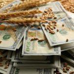 Аграрии назвали самый выгодный курс рубля