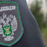 Глава Россельхознадзора подал заявление в полицию о ложном доносе. После того, как его обвинили в вымогательстве полумиллиона долларов