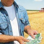 Кабмин облегчил доступ к кредитам аграриям, участвующим в нацпроекте поддержки занятости