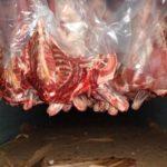 Ставропольские животноводы экспортировали продукции на сумму $67 млн