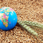 Экспортеры зерна планируют поставки за рубеж в размере 46,5 млн тонн