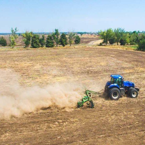 Площадь посевов яровых в Московской области выросла на 20 тыс. га