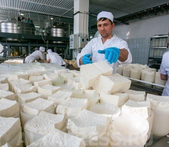 Алтайский край не может продать сыр и масло почти на 5 миллиардов рублей