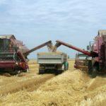 Российские аграрии намолотили более 33 млн тонн зерна
