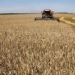 Ход сезонных полевых работ на 28 июля 2020 года
