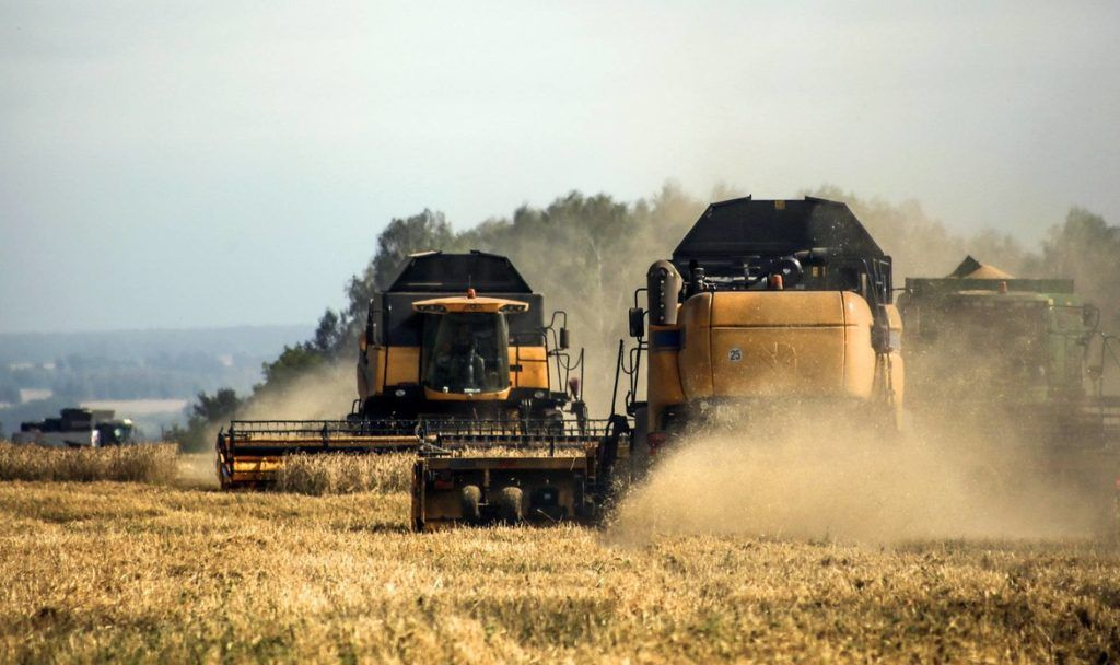 В Татарстане убрано более 40 тыс. тонн зерна