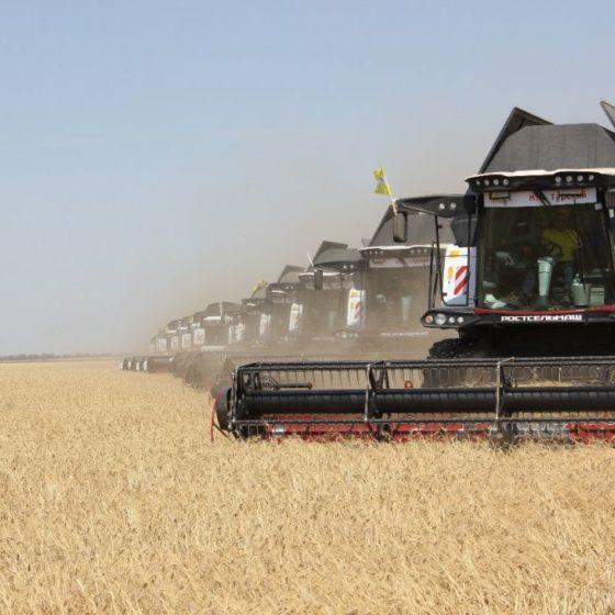 На Ставрополье убрали с полей 5,2 млн тонн зерновых