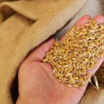 В Рязанской области подвели итоги ярового сева