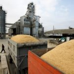 В Оренбуржье средний прирост урожайности составил 13 центнеров с га