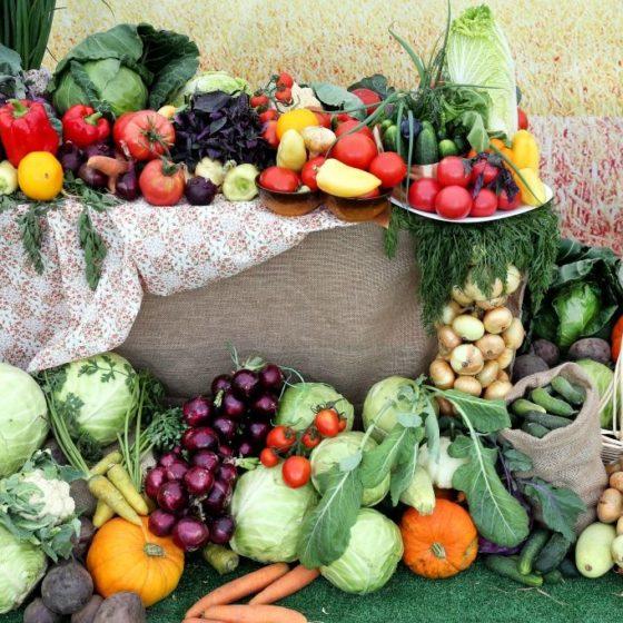 Экспорт томской сельхозпродукции вырос на 79%