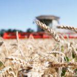 Экспорт сельхозпродукции России в Турцию вырос на 42%