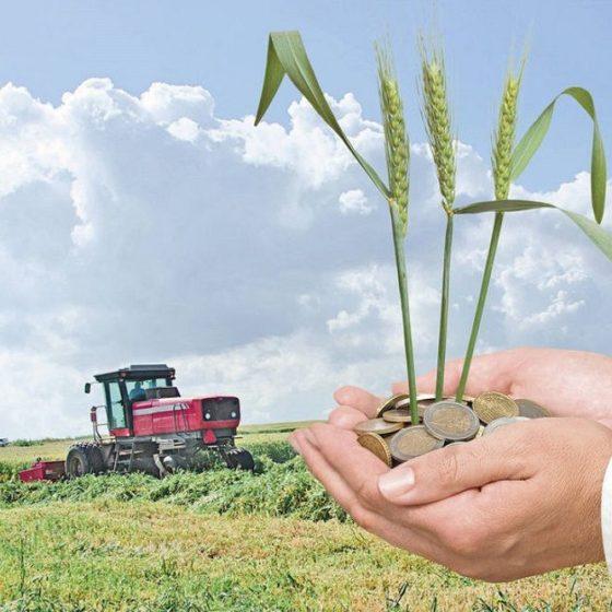 Удмуртия окажет поддержку предприятиям АПК, ориентированным на экспорт