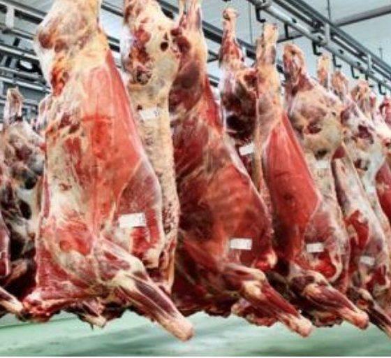 Узбекистан ищет говядину