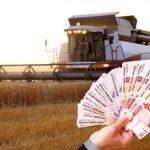 Алтайским фермерам возместят 300 млн рублей из-за засухи
