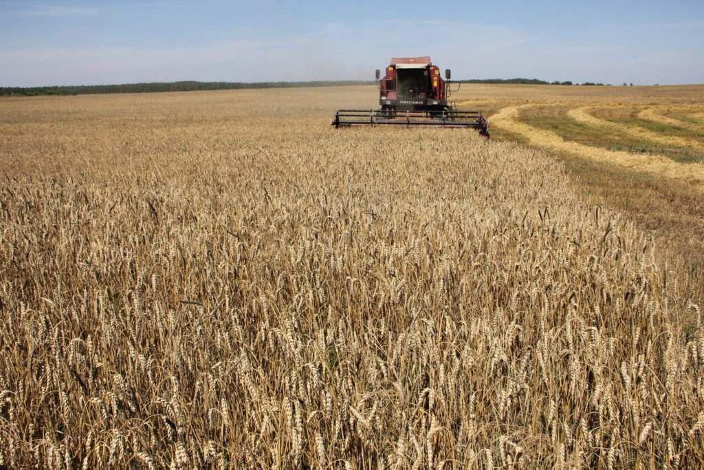 10 лучших предприятий АПК Оренбургской области по уборке зерновых