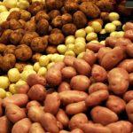 В Польше картофель подешевел на 62%