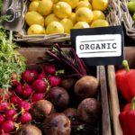 Центральный федеральный округ лидирует по числу производителей органической продукции