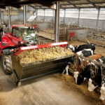 Объем сельхозпроизводства в Липецкой области с начала года вырос на 8,5%