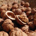 Мировое производство грецкого ореха увеличится до 2,3 млн тонн в сезоне 2020/21 гг.