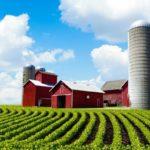 На сельхозземлях предлагают разрешить строить дома
