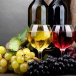 Минсельхоз России рассказал, как нужно уничтожать некачественное вино