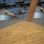 Более 2 тонн зерновой продукции задержали в Алтайском крае