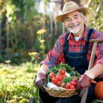 В 2020 году фермеры увеличили долю в валовом производстве сельхозпродукции до 14,3%